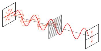 Как работает поляризационный фильтр