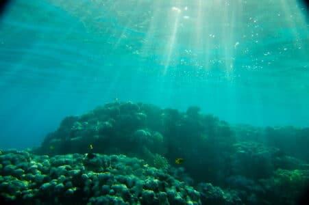 Красное море. Что фотографировать в Египте.
